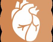 lapkas jantung